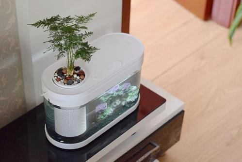 小米推出一款养鱼神器,轻松排水自带供氧,一键喂食,你心动了吗